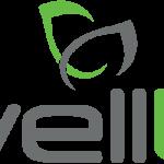 logo-wellu