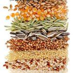 ziarenka nutrivi slim food